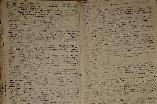 первая рукопись Эльвиры Барякиной